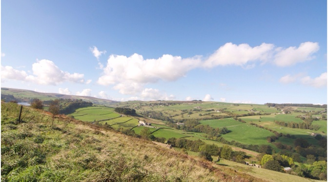 Bronte Country Walk
